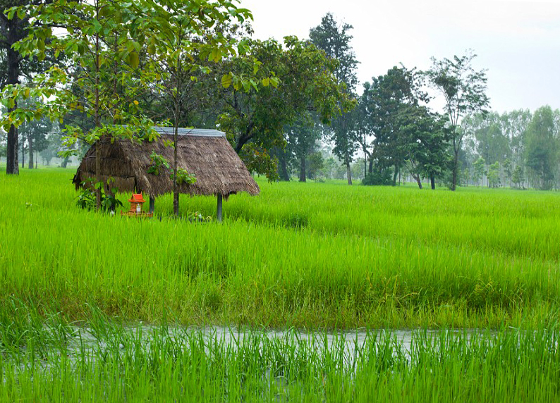 Северо-восточная зона Таиланда