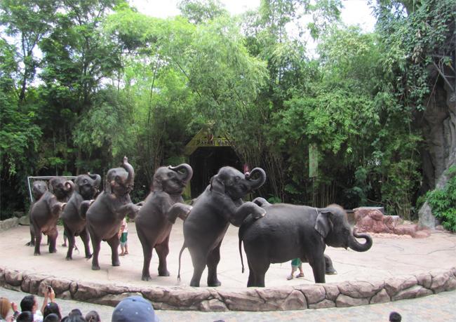 Шоу со слонами в сафари-парке Safari World