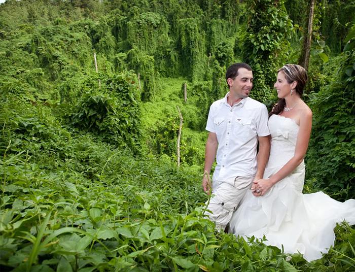 Свадьба в джунглях