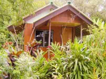 Бунгало отеля Tip Anda Resort